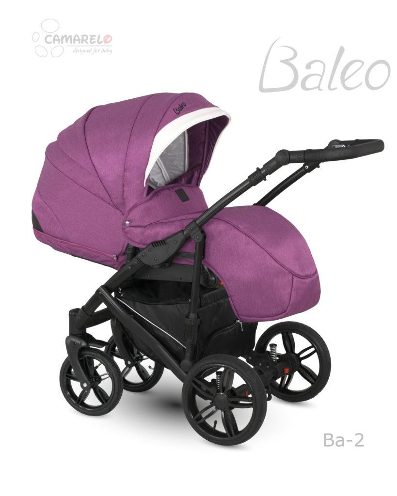 Baleo-Ba02b