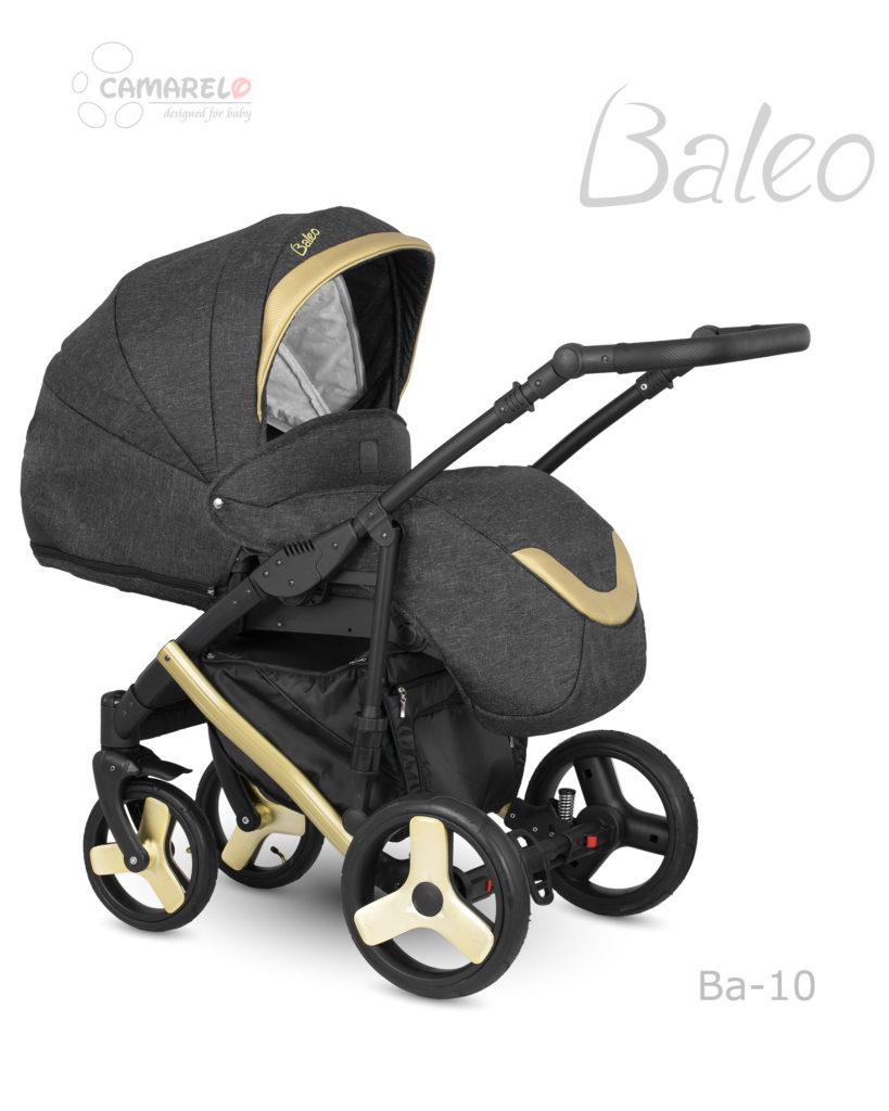 Baleo-Ba10b