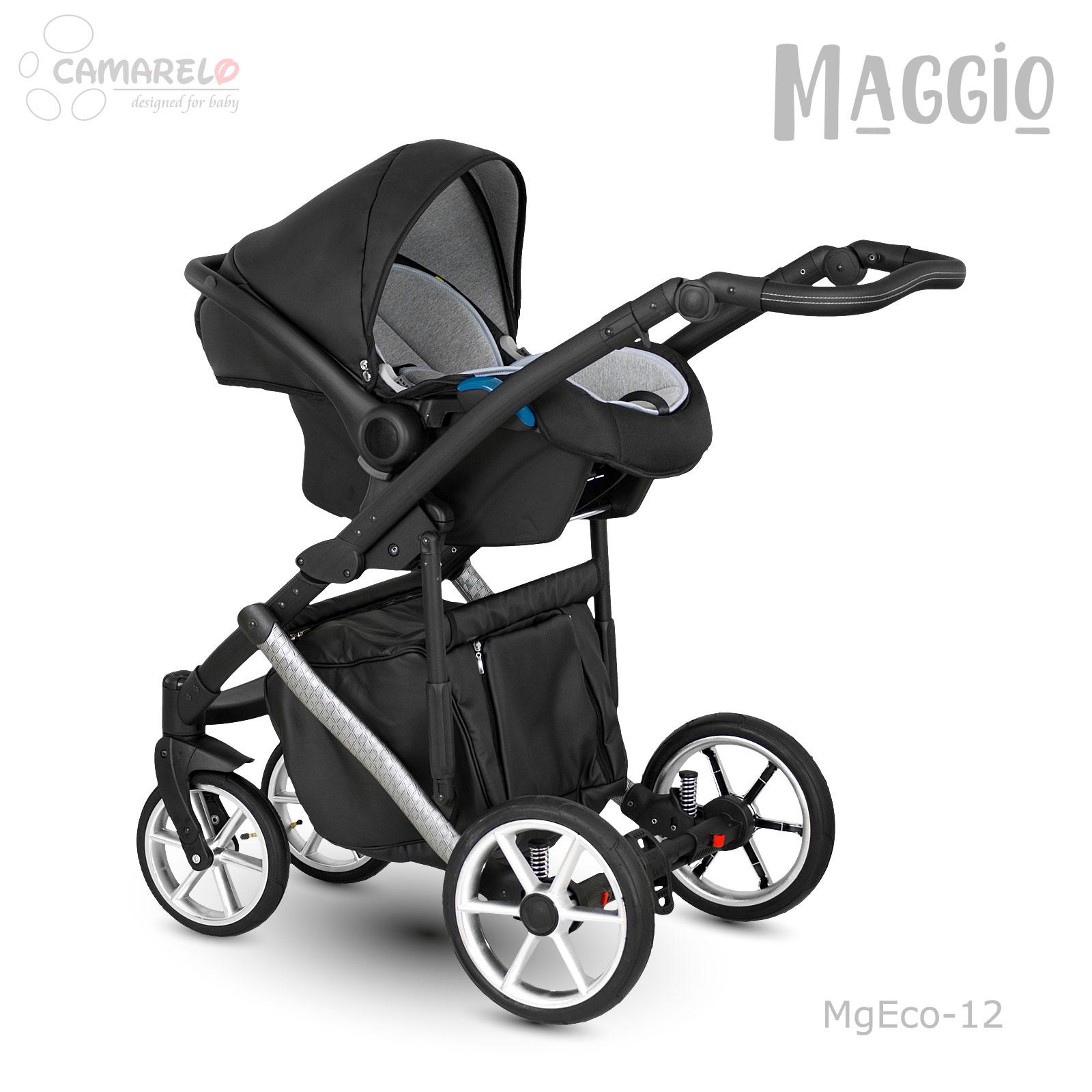 Maggio-MgEco-12e